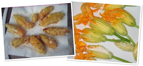 View fried zucchini blossoms