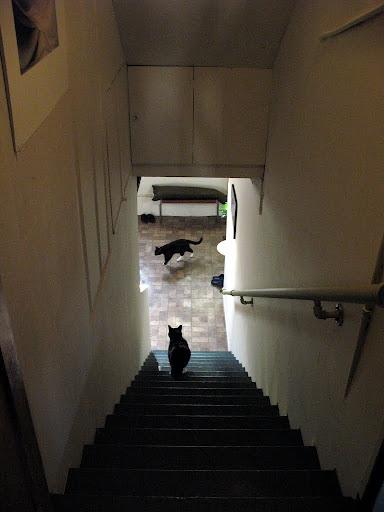 装修后-地下室楼梯间