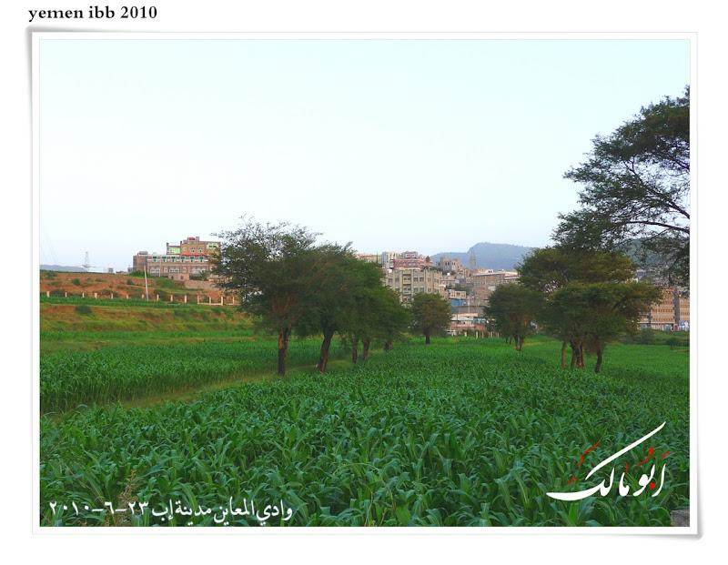 عاصمة السياحة اليمنية إب الخضرا %D8%A7%D9%85%D8%B7%D8%A7%D8%B11o