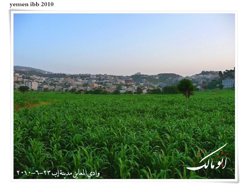 عاصمة السياحة اليمنية إب الخضرا %D8%A7%D9%85%D8%B7%D8%A7%D8%B15o