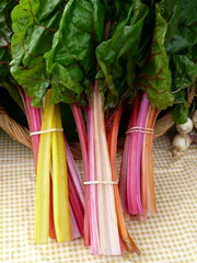 colourful rhubarb