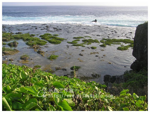 Green-Island-25.jpg