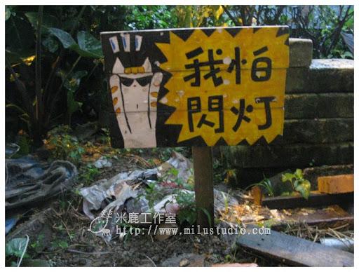 20100621-cats-44.jpg