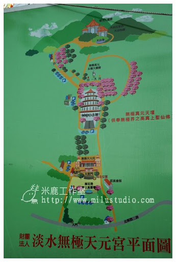 20110314flower38.jpg