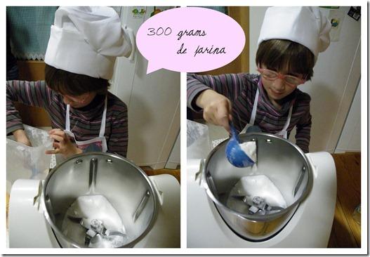 Galetes Petit Gourmend1FARINA