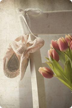 zapatillas  y  tulipanes  con textura-1 con bordes y BR