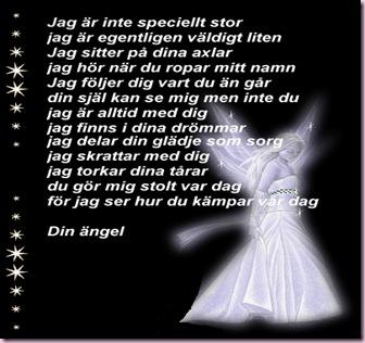 Din-angel[1]