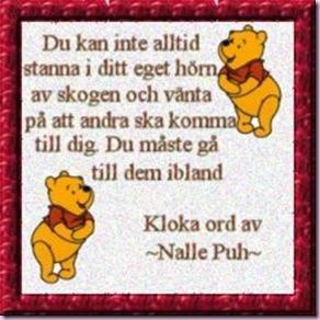 nalle_puh-dikt
