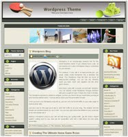 Free Wordpress Tennis Theme