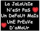 jalousie1