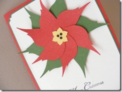 bird poinsettia 2