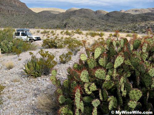 SUV or 4X4 is the best vehicle to explore Big Bend!