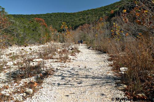 Exploring Maple Trail