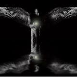 Wings-29847-07.jpg