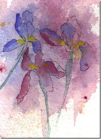 Iris Garden  watercolor painting