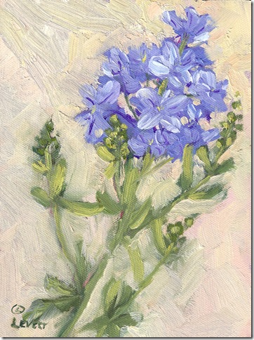 Plumbago, plien air oil painting