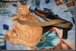 Cat and Kalashnikov - Кошка и автомат