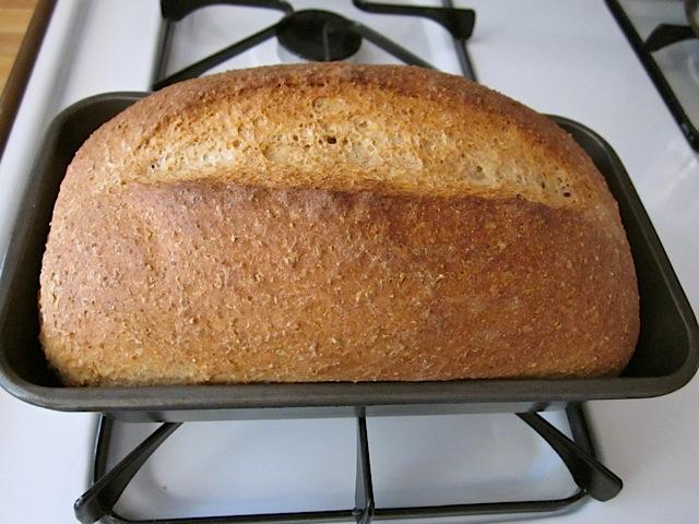baked honey wheat bread