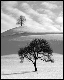 blanco-y-negro