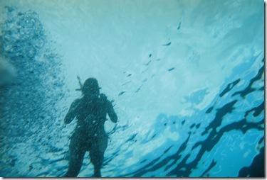 103.  Lorin underwater