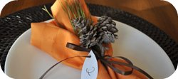 Thumbnail image for A Simple Diy Thanksgiving Place Setting
