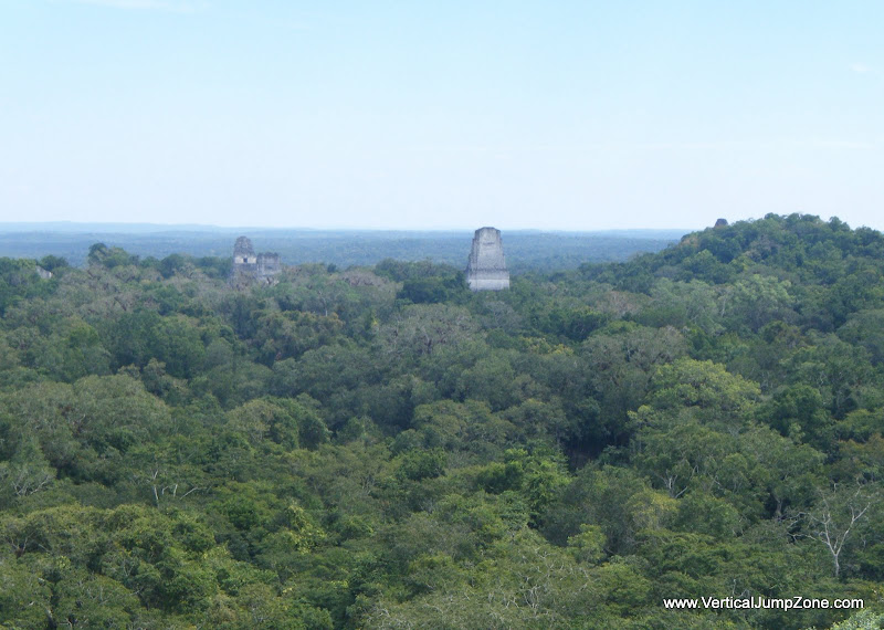 Bird's eye view of Tikal