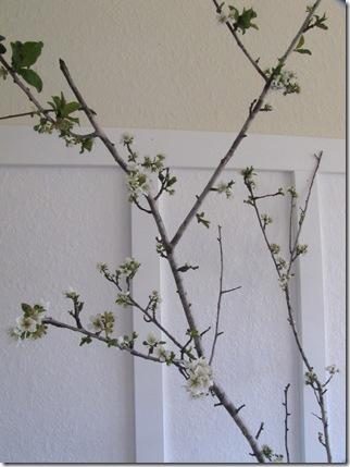 vase blossoms2