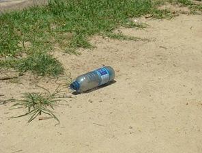 Garrafa plástica jogada no Parque da Aclimação