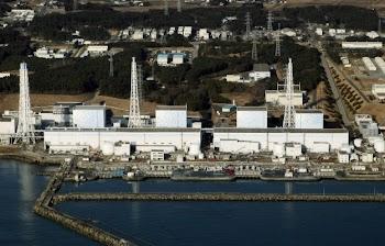 外交政策:发展核电仍利大于弊