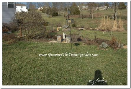 Birdbath Garden 1-2010-1
