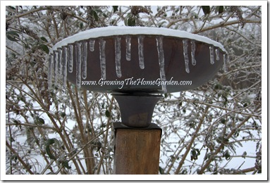 Copper Birdbath encased in Ice 1-2010-1