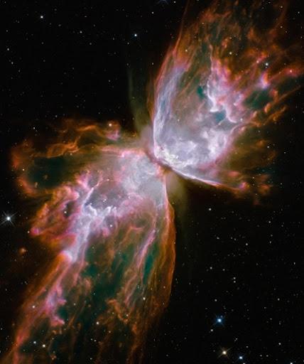 HubbleButterfly_1_540x645
