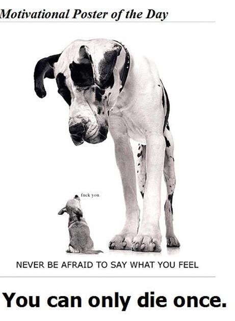 motivational_poster