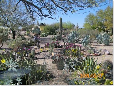 Sunscape RV Resort Cactus Garden