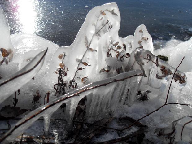 Damhussøen februar 2011