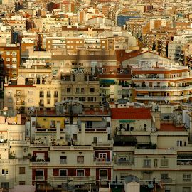 Barcelona Flats by Mary Gemignani - City,  Street & Park  Neighborhoods (  )