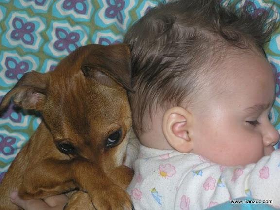 孩子和宠物 OLYMPUS DIGITAL CAMERA