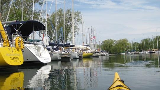 Toronto Island Sailboats