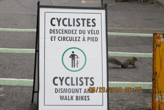McGill University bicycle ban