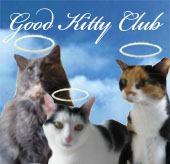 kitty-trio-good-kitty