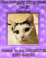 NKC kenjii_badge