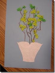 Forsythia Bushes 3rd Grade (2)