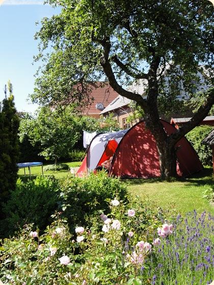 Ren sommerstemning med telt