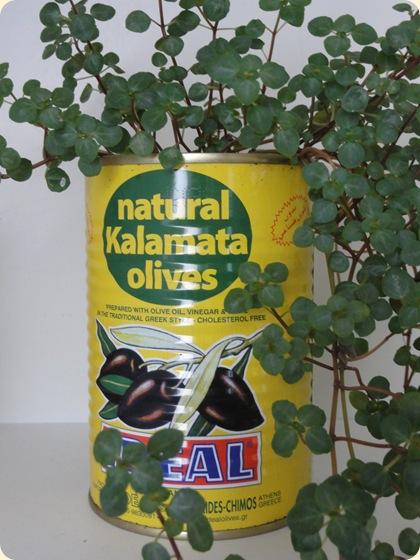 Olivendåse fra Søstrene Grene