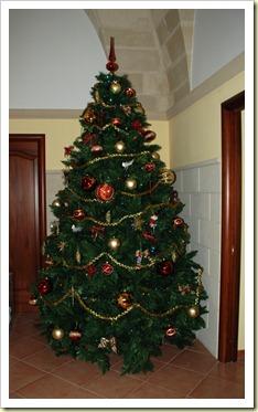albero1