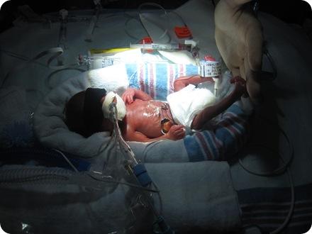 Baby 021