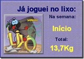 lixo12092009