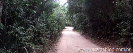 Camino a Ze Gonçalves