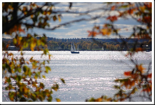 Autumn Sailboat