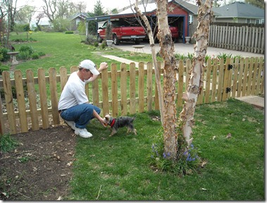 new fence 4-5-10 021